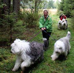 Skogstur på Sørum