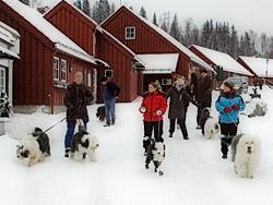 Jule-OES-tur på Bærums Verk.