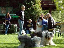 Hyggelig samvær og hundelek på Dambekk hos Laila og Terje i Lier.