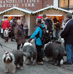 Stemningsfull Jule-OES-tur på Bærums Verk med 16 OES.