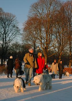 Vinterstemning i Frognerparken.