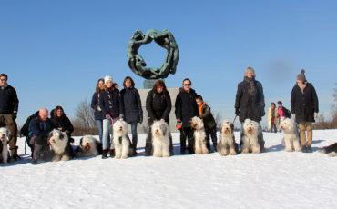 Hundetreff i Frognerparken