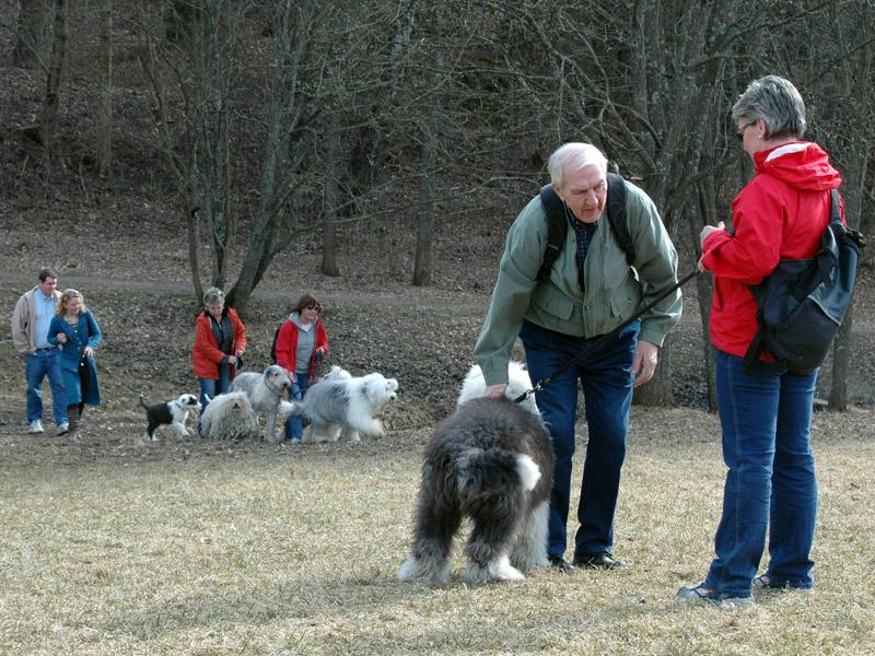 Glade hunder og eiere på tur.