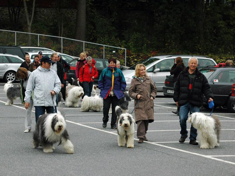 Tur på Bygdøy i samlet flokk.